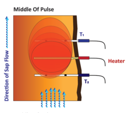 Diagram 1 Showing Middle of SFM1 Heat Pulse